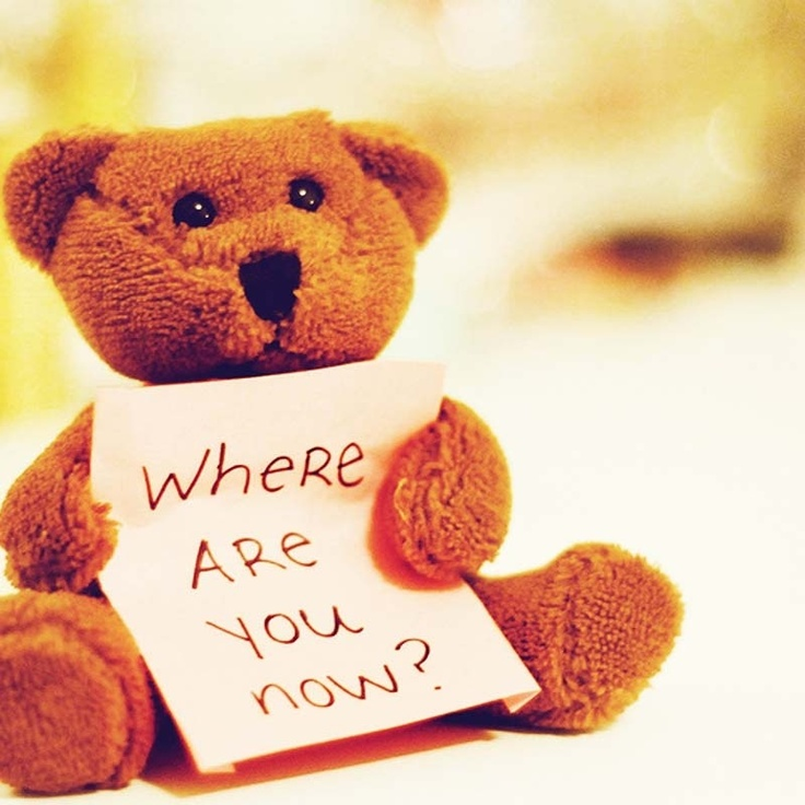 Where Are You Now ? My Carybear