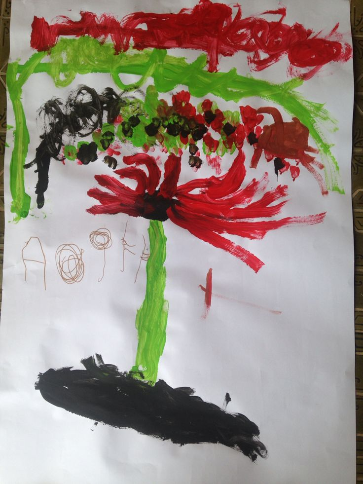 Sturt Desert Pea - painting from observation. Feb 2016   Aged 4