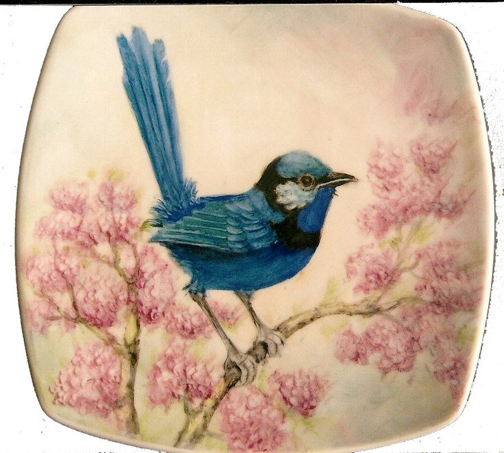 1000 images about wren tattoo on pinterest watercolors david hale and trees. Black Bedroom Furniture Sets. Home Design Ideas