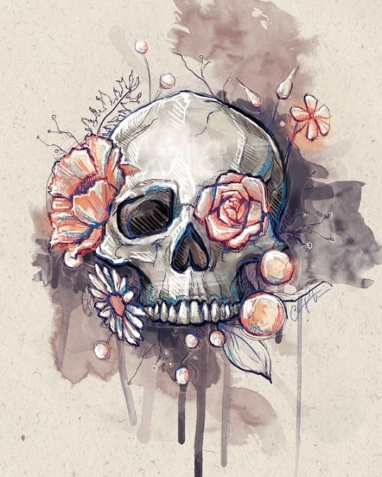 Skull by Chelsea Peters