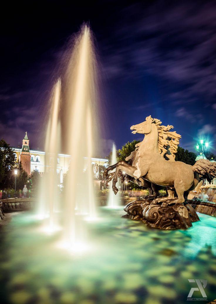 Horses of Alexandrovsky Garden