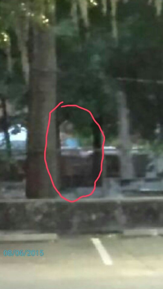 My daughter took this picture in a cemetery at St. AUGUSTINE FLORIDA , for her surprise she found in one of her pictures the ghost of a woman with a light pink dress holding a baby with a blue shirt.