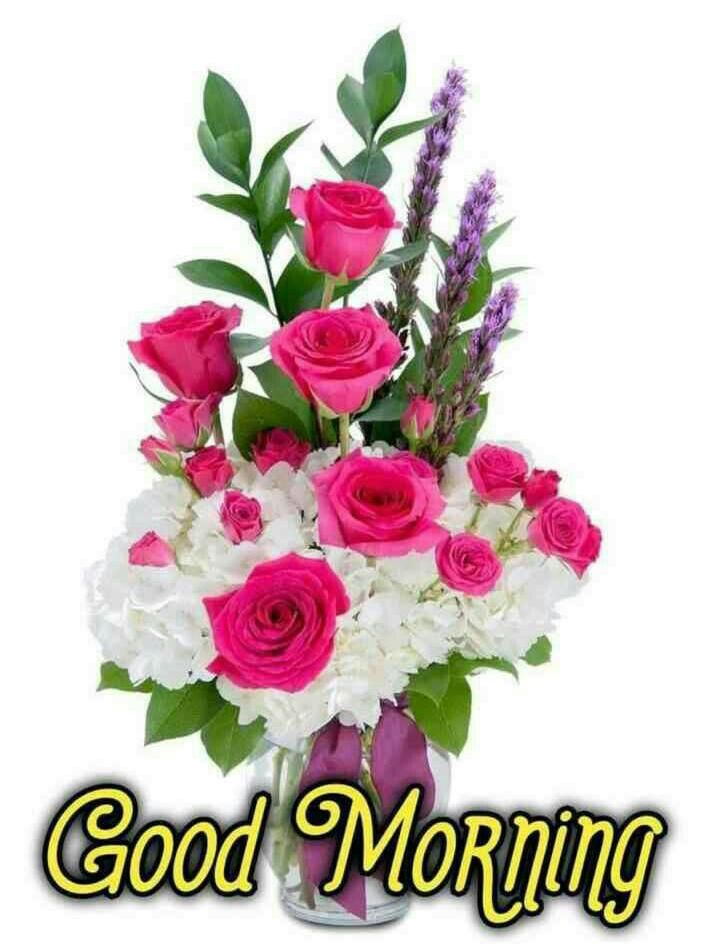 Good Morning Images For Whatsapp Free Download Hd Wallpaper Pictures Photos Of Good Mor In 2020 Good Morning Flowers Good Morning Images Good Morning Images Flowers