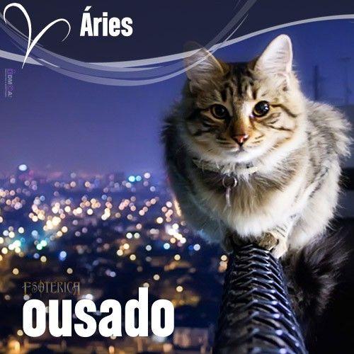 """""""#Áries #signos #zodíaco ♈"""""""