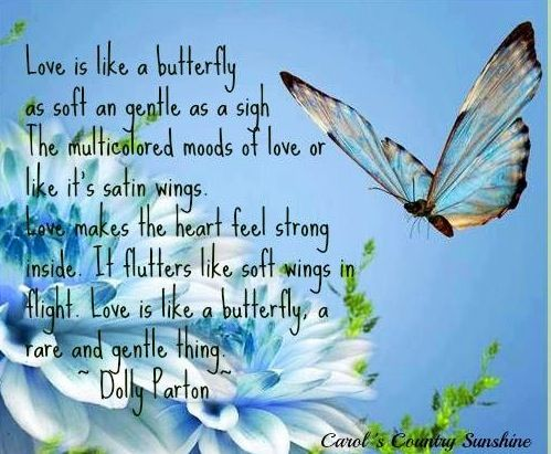 """Love is like a butterfly"" Dolly Parton quote via Carol's Country Sunshine on Facebook"