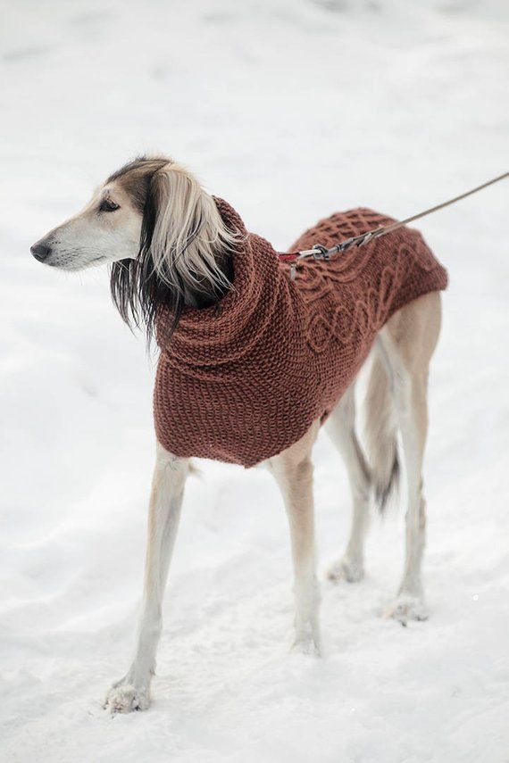 Warm wool sighthound sweater / custom made to order/ knit 100% sheep ...