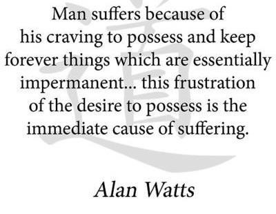 Alan Watts - so so true.