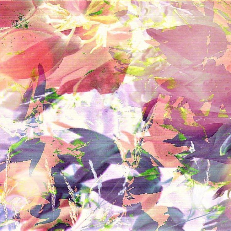 #Abstract #bloemen #fotografie #kunstfotografie