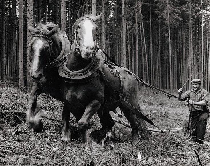 Martin Martinček: Na Čiernom Váhu III.:1970 - 1975