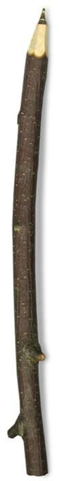 A great addition to any natural office - this natural twig pen will be the envy of everyone in the morning meeting :-)