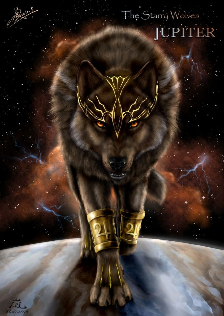 Jupiter:Black wolf with Amber eyes.Rules as a king in Juniper.Careless but gentle.Power.blue fire.Father of skyfire,blaze,blackblood,torch and redspots