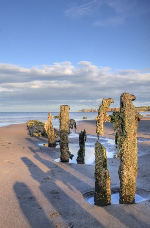 I Love these at Sandsend, North Yorkshire  Google Image Result for http://www.craigwilliamsgallery.com/images/sandsend.jpg