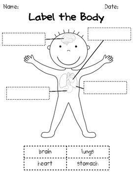 HOW OUR BODIES WORK: K/1 HUMAN BODY SCIENCE UNIT - TeachersPayTeachers.com