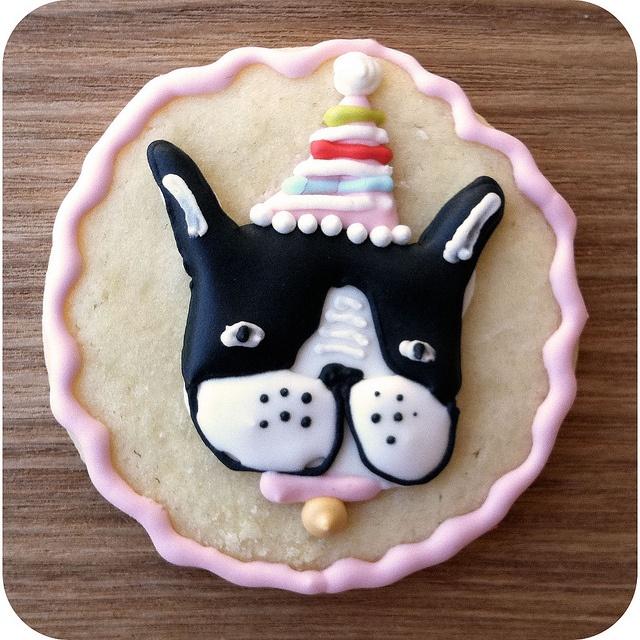 Dog Birthday Cakes Boston Ma