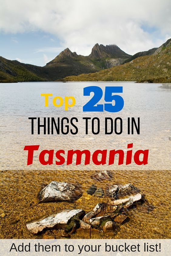 Dreaming of Tasmania? Here's the top 25 things to do in Tasmania - add them to your bucket list!