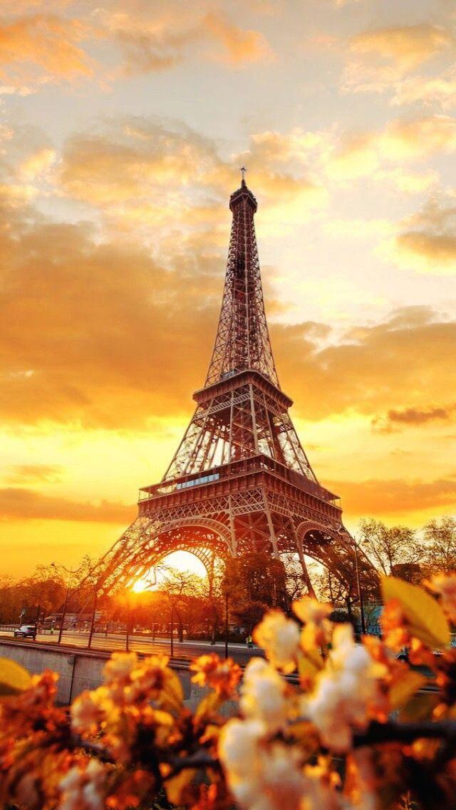 Wallpaper iPhone/Paris/flowers ⚪