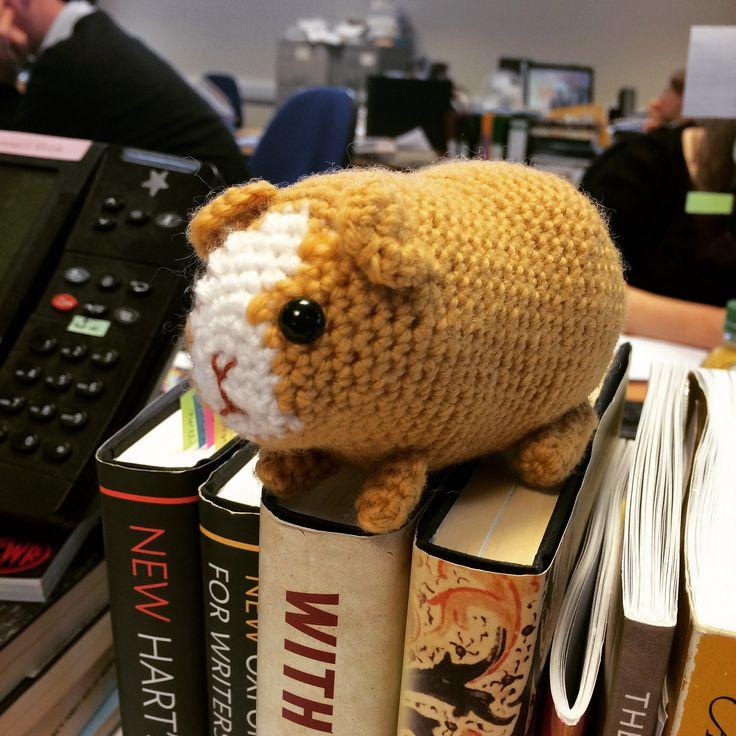 Meet Knibbles the crochet Guinea Pig!