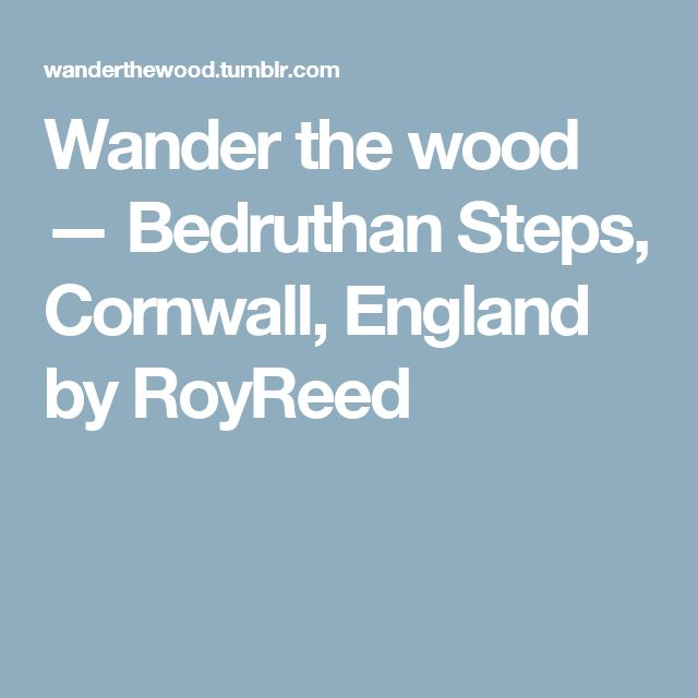 Wander the wood — Bedruthan Steps, Cornwall, England by RoyReed