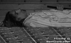 kurt cobain death scene - Bing Images