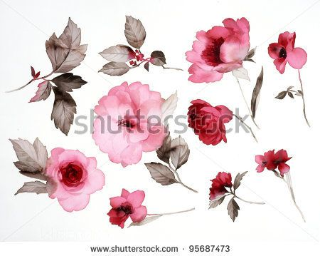 Color illustration of flowers in watercolor paintings.  I like these flowers