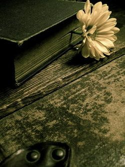 green book with a flower bookmark