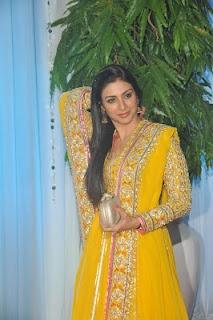 Salman Khan, Sridevi and Tabu at Esha Deol's Wedding Reception. | Bollywood Cleavage