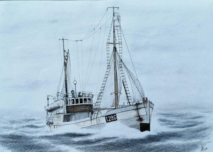"""Sealer """"Lance"""" of Gratangen Norway"""