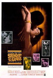 Splendor in the Grass (1961)  Drama Romance  7.8  A fragile Kansas girl's love for a handsome young man from the town's most powerful family drives her to heartbreak and madness.