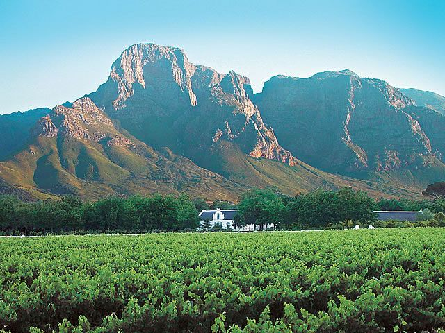 I LIVE IN THE MOST BEAUTIFUL PLACE IN THE WORLD Stellenbosch Winelands, Western Cape, South Africa
