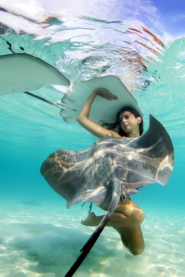 Taken in Moorea, off the north-west coast of Tahiti, these models are basically real life mermaids.   These Incredible Photos Show Models Swimming With Stingrays Off The Coast Of Tahiti