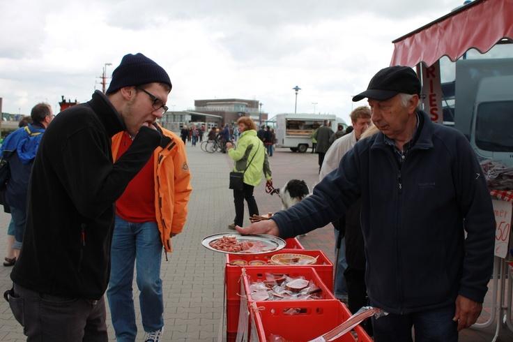 """Die Nordsee hat allerlei Köstlichkeiten zu bieten: Dennis kann an den """"Wattpeitschen"""" nicht vorbei gehen."""