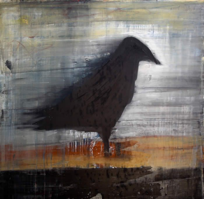 17 best images about blackbirds crows on pinterest