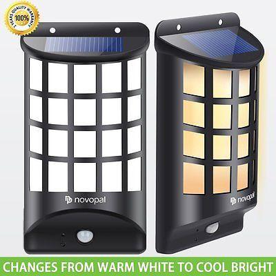 Sammy Squirrel Solar Outdoor Light Amazon Com Solar