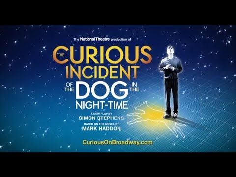 curious incident of the dog in the night time essay