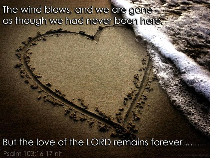 The wind blows, and we are gone as though we had never been here.  But the love of the Lord remains forever...  Psalm 103:16-17,