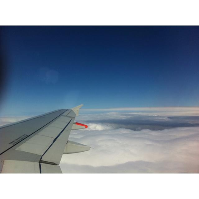 Flying back home