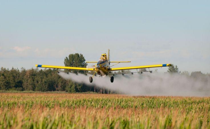 Contemporary Farmers - Everything Backyard Farming Ideas http://buff.ly/1TxIfFw