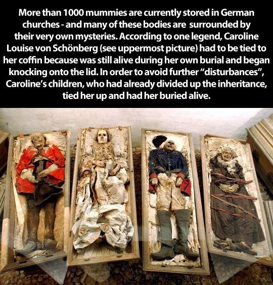 The mummies are awesome...but I do not believe the story of Caroline is true. Regardless, this is just creepy cool.