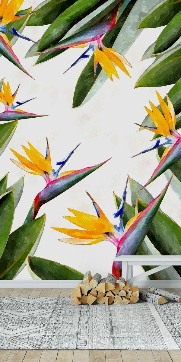 Bird Of Paradise Wall Mural Paradise Wallpaper Birds Of Paradise Mural