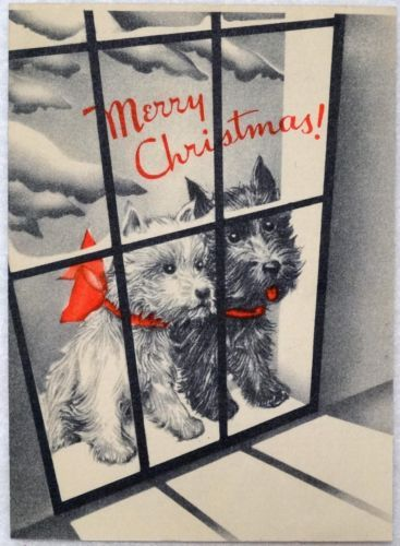 #1412 30s Scottie Dogs in the Window-Vintage Christmas Greeting Card