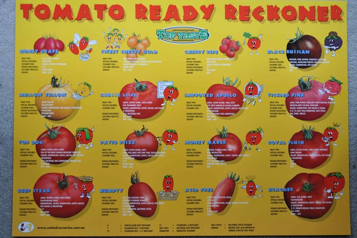 Tomato Varieties For Growing In Melbourne
