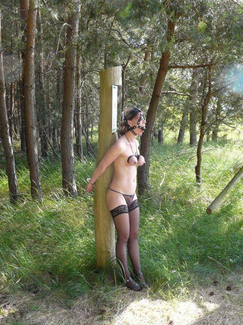 Geschichten Frau verloren Wette Erotik