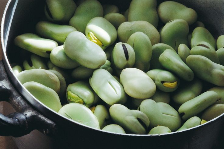 habas, vegetal, dieta, vegana, orgánica, 1702092105