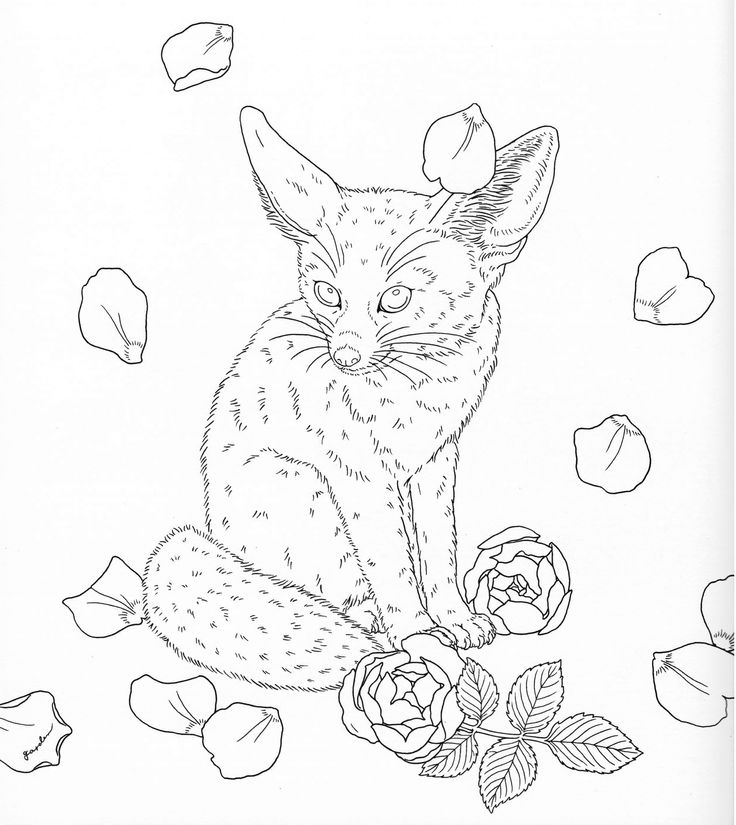 harmony of nature adult coloring book pg 23 - Colouring In Stencils