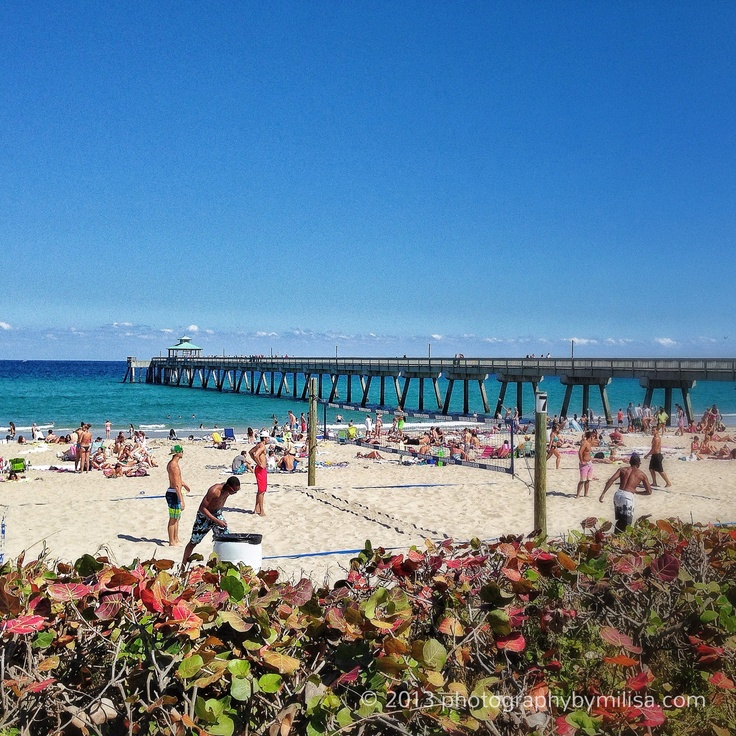 976 39 deerfield beach international fishing pier south for Delray beach fishing