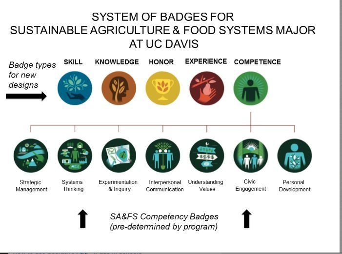 Image Result For Badge Hierarchy Badge Learning Educational