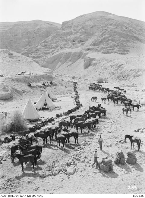 The camp and horse lines of A Squadron, 9th Australian Light Horse Regiment, in a valley. Ottoman Empire, Palestine, Jericho 17 Aug 1918
