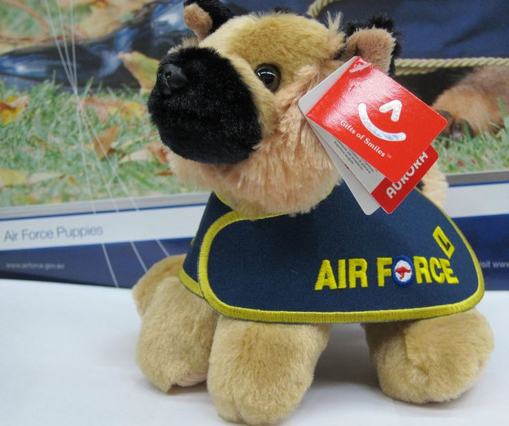 MILITARY WORKING DOG - RAAF Puppy