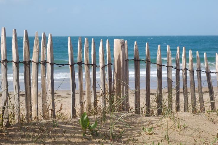 Ile d'Yeu. France. On appelle ces clotures de bois des ganivelles.