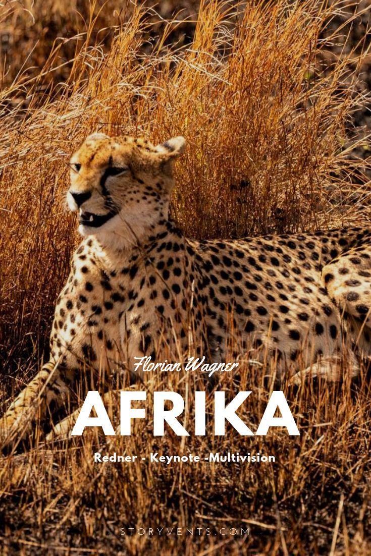 African Waters 360 Vortrag Von Florian Wagner Afrika Tiere